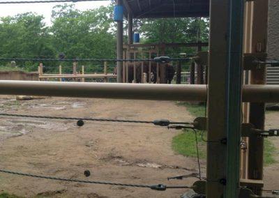 seneca-park-zoo-elephant-enclosure-05