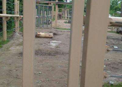 seneca-park-zoo-elephant-enclosure-06